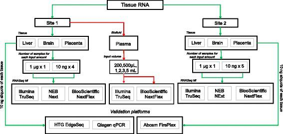 Schematic of study design. Tissue RNA from brain, liver and placenta were sequenced at two sites at two input amounts (1 μg and 10 ng) using three different RNA sequencing kits (Illumina TruSeq, NEB Next and BiooScientific NEXTFlex). RNA from plasma samples at 5 different input volumes (200 μL – 5 mL) were sequenced at Site 1 using only TruSeq and BiooScientific. The green arrow depicts the flow of one of the tissue samples – brain using NEB Next and the red arrows, the plasma samples. The RNASeq results from the tissue samples were then validated using three different platforms (qPCR, EdgeSeq performed by Site1 and Fireplex performed by Site2). For a full list of samples sequenced, please refer to Additional file 1 : Table S1
