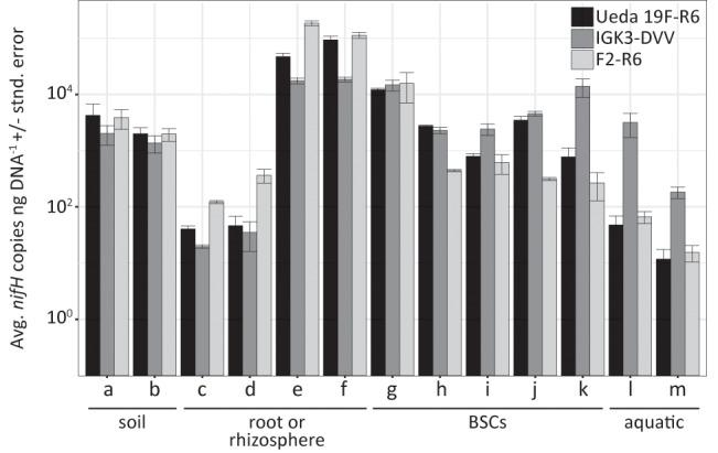 Average nifH copies per ng DNA ± standard error across environmental samples based on quantitative PCR using the different primer pairs. The environmental samples include: (a) beech forest soil; (b) meadow soil; (c) rhizosphere and (d) root samples of Arrhenatherum elatius ; (e) rhizosphere and (f) root samples of Oryza sativa ; (g) coastal, sub-arctic biological soil crust (BSC); (h) temperate BSC; (i) high alpine BSC; (j) semiarid BSC; (k) arid BSC; estuarine samples from the (l) Great Belt and (m) Roskilde Fjord. Numbers of copies were corrected to exclude non- nifH genes that were co-amplified using information obtained from amplicon sequencing of the samples with the specific primer pairs.