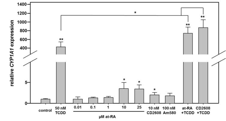 Real-time RT-PCR analysis of CYP1A1 mRNA expression in Caco-2 cells following stimulation with different nuclear receptor agonists. Cells were treated with agonists of the AHR, the different retinoid receptors, or combinations of both. Combination of RXRα and AHR activation yields over-additive effects. Mean + SD (n ≥ 3 independent experiments) are shown. Statistical significance is indicated as follows: *, p