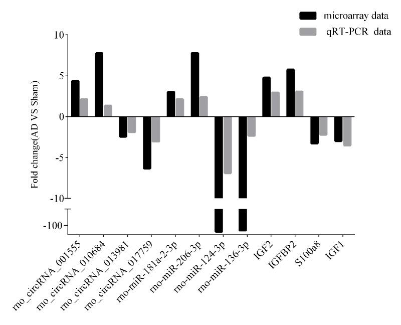 <t>qRT-PCR-validated</t> ncRNA and mRNA expression changes. Microarray validation by qRT-PCR. Expression levels of four circRNAs, four miRNAs, and four mRNAs were determined by qRT-PCR. Each assay was performed at least three times. * p
