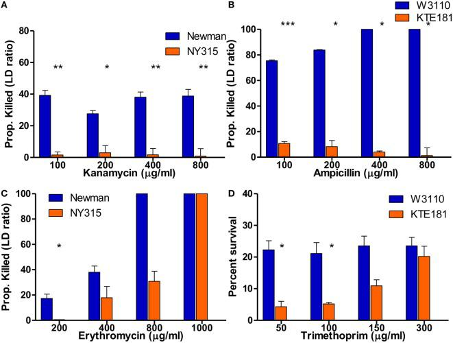 SYBR Green I/propidium iodide (PI) assay reveals killing of bactericidal and bacteriostatic antibiotics in 30 min. SYBR Green I/PI assay reveals killing between sensitive and resistant strains after treatment with increasing concentrations of bactericidal drugs (A) kanamycin for Staphylococcus aureus and (B) ampicillin for Escherichia coli . Upon treatment with increasing concentrations of bacteriostatic drugs (C) erythromycin for S. aureus and (D) trimethoprim for E. coli , SYBR Green I/PI assay was consistently able to distinguish sensitive and resistant strains when administered at different concentrations for both sensitive and resistant strains (Student's t -test, * p