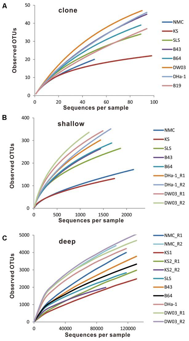 Rarefaction curves by plotting observed OTU number against sampled sequence number. (A) Clone sequence, (B) shallow Illumina sequence, and (C) deep Illumina sequence.