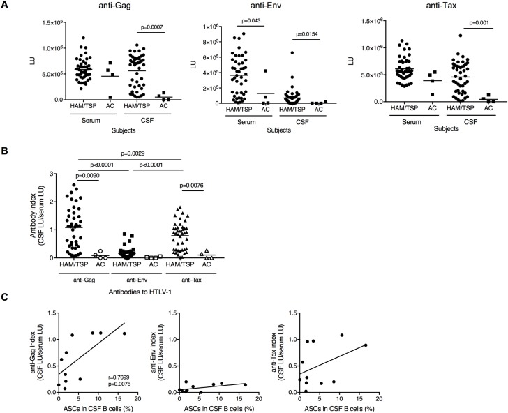 Antibody responses against HTLV-1 in CSF of HTLV-1-infected subjects. (A) Comparison of antibody responses against HTLV-1 Gag, Env and Tax in serum and CSF of ACs and HAM/TSP patients using Mann-Whitney Test. (B) Comparison of CSF/serum anti-HTLV-1 Gag, Env and Tax antibody ratio of HAM/TSP patients and ACs using Paired T test or Mann-Whitney Test. All the data were obtained from HAM/TSP patients (n = 44) and ACs (n = 4). The horizontal line represents the mean. (C) Correlation of ASCs in CSF B cells with anti-Gag, anti-Env and anti-Tax antibody index in HAM/TSP patients (n = 11) using Spearman's rank correlation test.