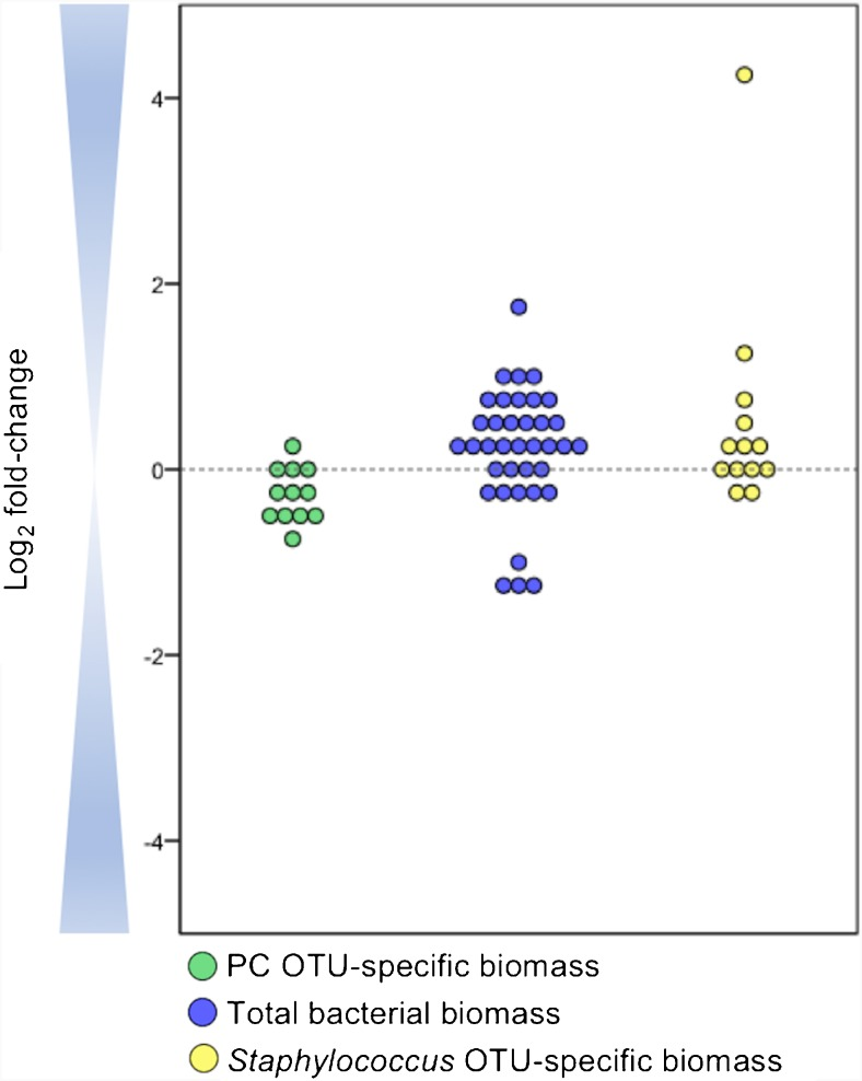 Accuracy of <t>16S</t> <t>rRNA</t> gene copy determination using MYcrobiota. The expected number of 16S rRNA gene copies within the positive control (PC) was compared to the measured number of 16S rRNA gene copies using MYcrobiota (green dots). The PC contained 10,000 16S rRNA gene copies of four different bacterial species and was processed in three independent MYcrobiota experiments. The indirect estimation of the total bacterial biomass within 37 clinical samples using MYcrobiota was compared to the total 16S rRNA gene copies measured directly using a 16S rRNA gene qPCR (blue dots). The Staphylococcus OTU-specific biomass from 13 S . aureus culture-positive samples was compared to the S . aureus biomass detected directly using a S . aureus -specific qPCR (yellow dots). In order to compare the number of S . aureus genome copies estimated using qPCR to the number of 16S rRNA gene copies detected using MYcrobiota, the estimated S . aureus genome copies were first multiplied by a factor of 6 to correct for differences in copy numbers of the Martineau fragment and the 16S rRNA gene present on the S . aureus genome. The calculated differences between methods were plotted using a binary logarithmic scale