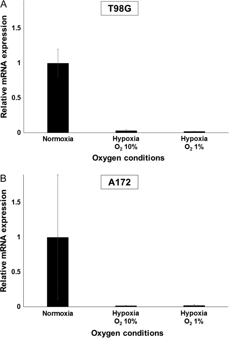 Reduced oxygen conditions decrease mRNA expression levels of LAT1. Cells were incubated at oxygen concentrations of 20.8% (normoxia), 10% or 1% oxygen (hypoxia) for 72 h, followed by total RNA extraction and qRT-PCR. (A) In T98G, relative expression of LAT1 was significantly lower than in cells incubated under normoxia. (B) In A172, similar results were obtained as for the T98G cell line. Values are expressed as the mean ± standard error.