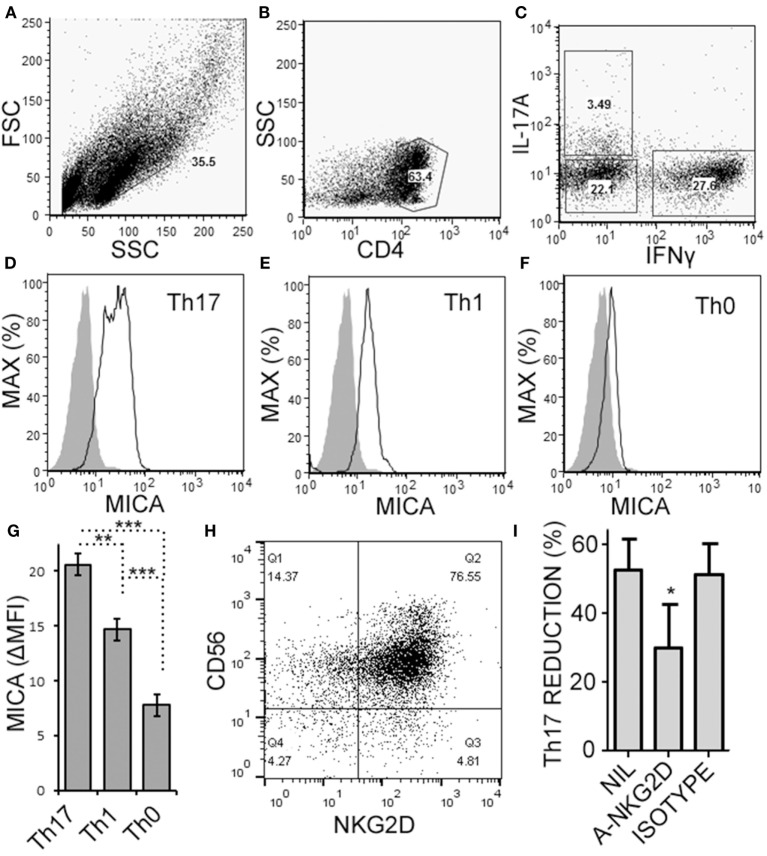Activated memory CD4 + T cells express MICA and are sensitive to NKG2D-mediated natural killer (NK) cell cytotoxicity. Memory CD4 + T cells were obtained from healthy subject PBMC, as described in Figure 5 , and activated with anti-CD3, anti-CD28, and Th17 polarizing factors for 4 days. Expression of CD4, MICA (Zenon labeled), IL-17A, and IFN-γ were assessed by intracellular cytokine staining and flow cytometry. Representative plots of FSC × SSC (A) , CD4 × SSC (B) , and IL-17A × IFN-γ (C) are shown. MICA expression on Th17 (D) , Th1 (E) , and the Th0 cells (F) is shown. Open histogram indicate MICA stained cells and closed histograms indicate an isotype control. The average mean fluorescent intensity of MICA minus the isotype control is shown [ΔMFI; (G) ]. Expression of CD56 and NKG2D by NK cells was assessed by flow cytometry and a representative plot is shown (H) . NK cells were cultured with memory CD4 + T cells and activated with anti-CD3, anti-CD28, and Th17 polarizing factors, at the same time treated without antibody, (NIL), anti-NKG2D neutralizing antibody, or isotype control antibody (I) . N = 7 samples.