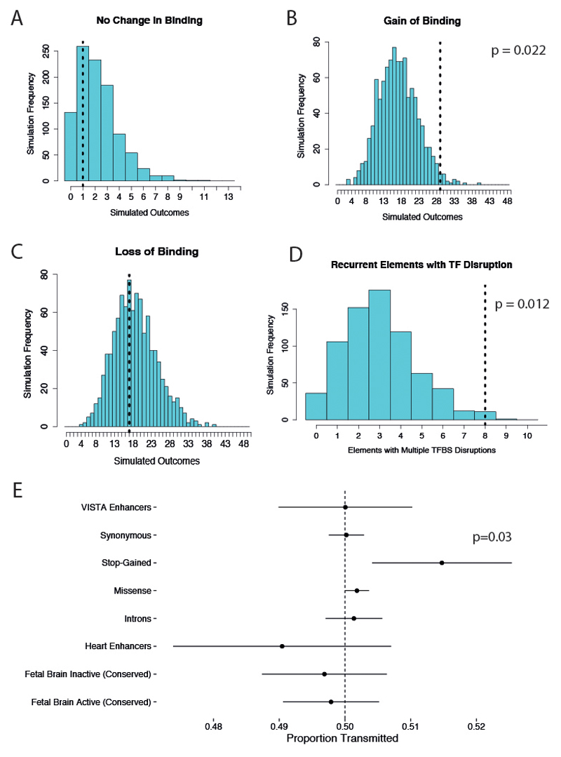 Generation and functional characterization of inducible knockdown hPSCs for the subunits of the m6A methyltransferase complex. ( a ) qPCR validation of tetracycline-inducible knockdown (iKD) hESCs cultured in presence of tetracycline (TET) for 5 days to drive gene knockdown. Two distinct shRNAs (sh) and multiple clonal sublines (cl) were tested for each gene. Expression is shown as normalized on the average level in hESCs carrying a negative control scrambled (SCR) shRNA. For each gene, sh1 cl1 was chosen for further analyses. The mean is indicated, n=2 cultures. ( b ) Western blot validation of selected iKD hESCs for the indicated genes. TUB4A4 (α-tubulin): loading control. Results are representative of three independent experiments. ( c ) m6A methylated RNA immunoprecipitation (MeRIP)-qPCR in iKD hESCs cultured for 10 days in absence (CTR) or presence of tetracycline (TET). m6A abundance is reported relative to control conditions in the same hESC line. The mean is indicated, n=2 technical replicates. Results are representative of two independent experiments. ( d ) m6A dot blot in WTAP or SCR iKD hESCs treated as described in panel c. Decreasing amounts of mRNA were spotted to facilitate semi-quantitative comparisons, as indicated. Results are representative of two independent experiments. ( e ) Immunofluorescence for the pluripotency markers NANOG and OCT4 in iKD hESCs cultured for three passages (15 days) in absence (CTR) or presence of tetracycline (TET). DAPI shows nuclear staining. Scale bars: 100μm. Results are representative of two independent experiments. ( f ) Flow cytometry quantifications for NANOG in cells treated as described for panel e. The percentage and median fluorescence intensity (MFI) of NANOG positive cells (NANOG+) are reported. The gates used for the analysis are shown, and were determined based on a secondary antibody only negative staining (NEG). Results are representative of two independent experiments.