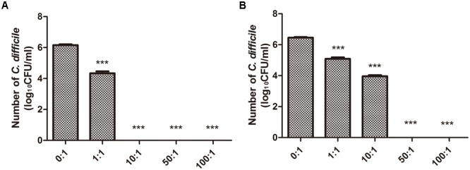 Growth of C. difficile co-cultured with B. longum JDM301. (A) The growth of ATCC 43255 co-cultured with B. longum JDM301. C. difficile ATCC 43255 was co-cultured with B. longum JDM301 at different inoculation ratios ( B. longum : C. difficile 43255) in BHI for 48 h at 37°C under anaerobic conditions. (B) The growth of ATCC 9689 co-cultured with B. longum JDM301. C. difficile ATCC 9689 was co-cultured with B. longum JDM301 at different inoculation ratios ( B. longum : C. difficile ATCC 9689) in BHI for 48 h at 37°C under anaerobic conditions. The values presented are the averages of three independent experiments; error bars represent the standard deviations. ∗∗∗ P