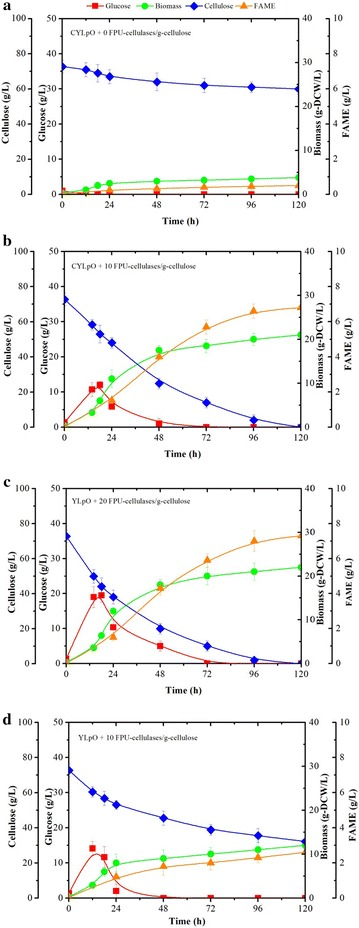 Comparison of growth, cellulose consumption and lipid production of recombinant Y. lipolytica strains. a CYLpO, b CYLpO with the addition of 10 FPU cellulases/g cellulose, c YLpO with the addition of 20 FPU cellulases/g cellulose and d YLpO with the addition of 10 FPU cellulases/g cellulose during aerobic batch culture in minimum media containing 72.8 g/L cellulose