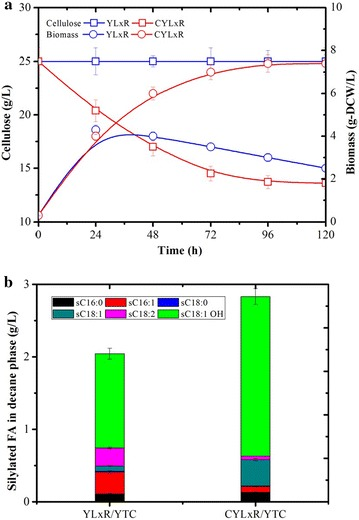 Ricinoleic acid production of recombinant Y. lipolytica strains YLxR and CYLxR during aerobic batch culture in YTC media. a Comparison of growth and cellulose consumption and b ricinoleic acid production in 5 days. Values plotted at each time point are the means of three replications. Error bars represent standard deviation from the means