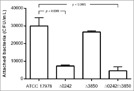 Quantification of bacterial adhesion to A549 cells by the A. baumannii ATCC 17978 strain, the mutant derivative strain Δ0242, the mutant derivative strain Δ3850 and the double mutant strain Δ0242/Δ3850.