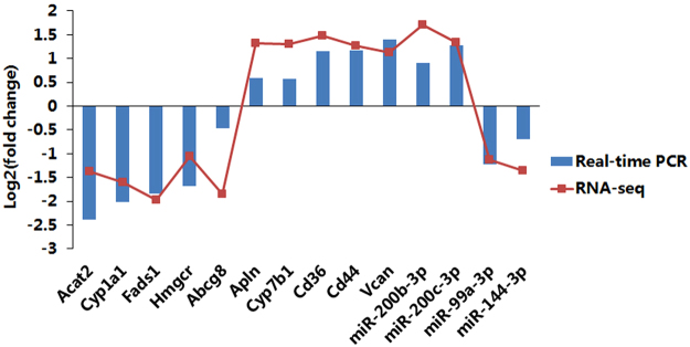Real-time PCR validation of several representative expressed mRNAs and miRNAs. The x-axis represents RNA names, and the y-axis represents log 2 (fold change) based on the ratios between the NAFLD and normal groups' average expression values. Blue bars represent data yielded by real-time qPCR, and red points represent data obtained by RNA sequencing.