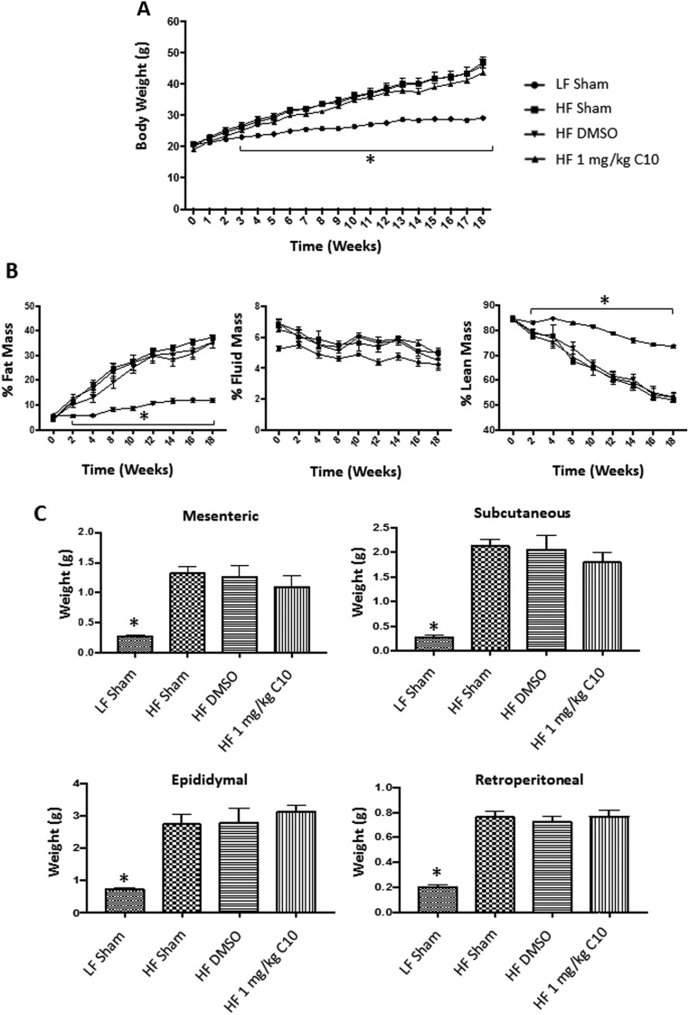 C10 does not prevent weight gain or an increase in fat mass due to HF-feeding. Seven-week old C57BL/6J male mice were fed either LF or HF diet and treated once daily with sham, DMSO, or C10 intraperitoneal injection for 18 weeks. Total body weights were measured weekly and body composition was measured every 2 weeks for the duration of the study. Adipose (mesenteric, subcutaneous, epididymal, and retroperitoneal) tissue weight was measured after tissue harvest at 18 weeks. (A) HF diet feeding promoted a marked increase in body weight when compared to LF-fed mice. (B) Additionally, % Fat mass was increased in HF-fed mice when compared to LF-fed controls. Percent Lean Mass was increased in LF-fed mice when compared to HF-fed groups. Percent Fluid Mass was no different between LF- and HF-fed mice. (C) HF-fed mice displayed increased adipose tissue weights after 18 weeks on HF diet when compared to LF-fed mice. Data points on line graphs (A and B) indicate mean and error bars indicate +/− s.e.m. and bars on bar graphs (C) indicate mean + s.e.m. Significance was determined using ANOVA followed by Tukey's post hoc analysis for multiple comparison; *Different from HF-fed groups; P