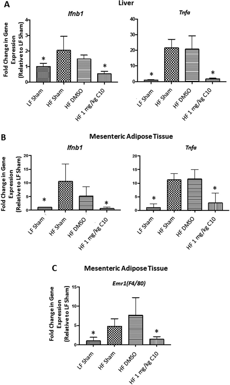 C10 prevents HF diet-induced inflammation in vivo . Inflammatory gene expression was measured in liver and mesenteric adipose tissue after 18 weeks of HF diet feeding. Hepatic Ifnb1 and Tnfa expression were reduced in C10-treated mice when compared to HF sham and DMSO groups (A). Additionally, C10 prevented an upregulation of Ifnb1 and Tnfa in mesenteric adipose tissue (B) as well as Emr1 ( F4/80 ), a macrophage marker (C). Bars indicate mean + s.e.m. Significance was determined using ANOVA followed by Tukey's post hoc analysis for multiple comparison; *Different from HF sham and HF DMSO groups; P