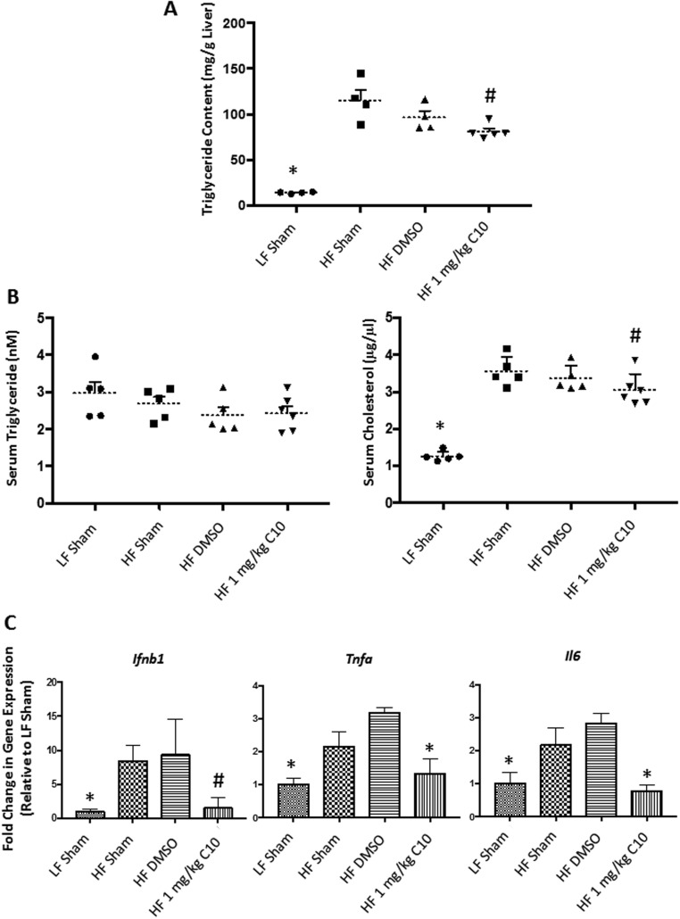 C10 treatment reverses HF diet-induced hepatic steatosis and hepatic and adipose inflammation and reduces serum cholesterol. (A) Treatment with C10 decreased hepatic triglyceride content when compared to HF-fed sham and DMSO groups. (B) Total serum cholesterol levels were reduced in the HF-fed C10-treated mice when compared to HF-fed control mice, however, serum triglyceride levels were unchanged. Dotted lines represent the mean and error bars indicate + s.e.m. (C) Hepatic Ifnb1 , Tnfa and Il6 expression was reduced in C10-treated mice when compared to HF sham and DMSO groups. Bars indicate mean + s.e.m. Significance was determined using ANOVA followed by Tukey's post hoc analysis for multiple comparison; # Different from HF sham and DMSO groups; P
