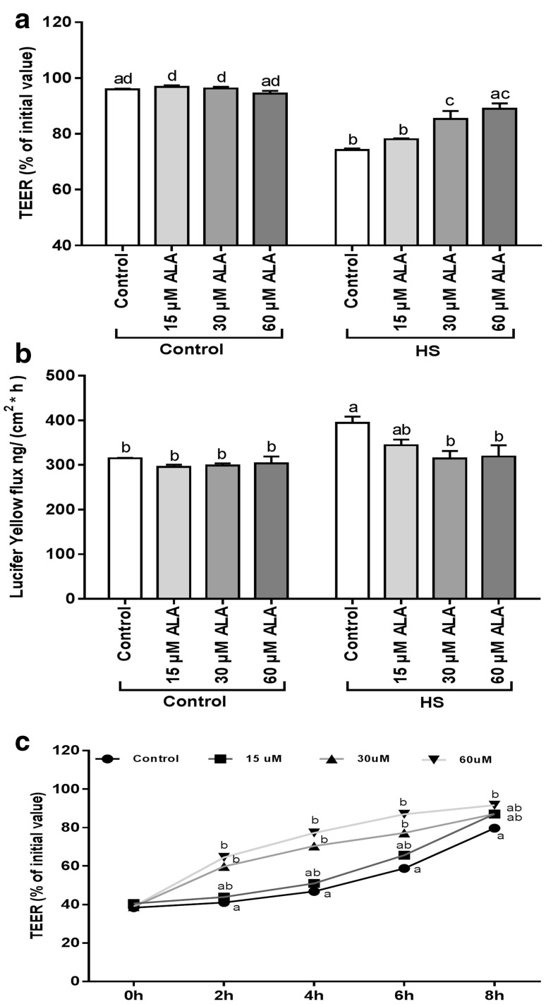 ALA prevents the HS-induced disruption of epithelial integrity and accelerates the JC reassembly. Caco-2 cells grown on inserts were pretreated with ALA (24 h) prior to HS exposure (42 °C) and TEER ( a ) and LY transport ( b ) across the Caco-2 monolayer was measured after 24 h exposure to HS. For the calcium switch assay, Caco-2 cells were pretreated with ALA (24 h) before calcium deprivation and TEER was measured during recovery (0, 2, 4, 6, 8 h) in medium supplemented with ALA ( c ). Data are expressed as a percentage of initial value (TEER, calcium switch assay) or in the amount LY transported [ng/(cm 2 × h)] detected in the basolateral compartment of transwell inserts as mean ± SEM of three independent experiments. Different lower case letters denote significant differences among groups