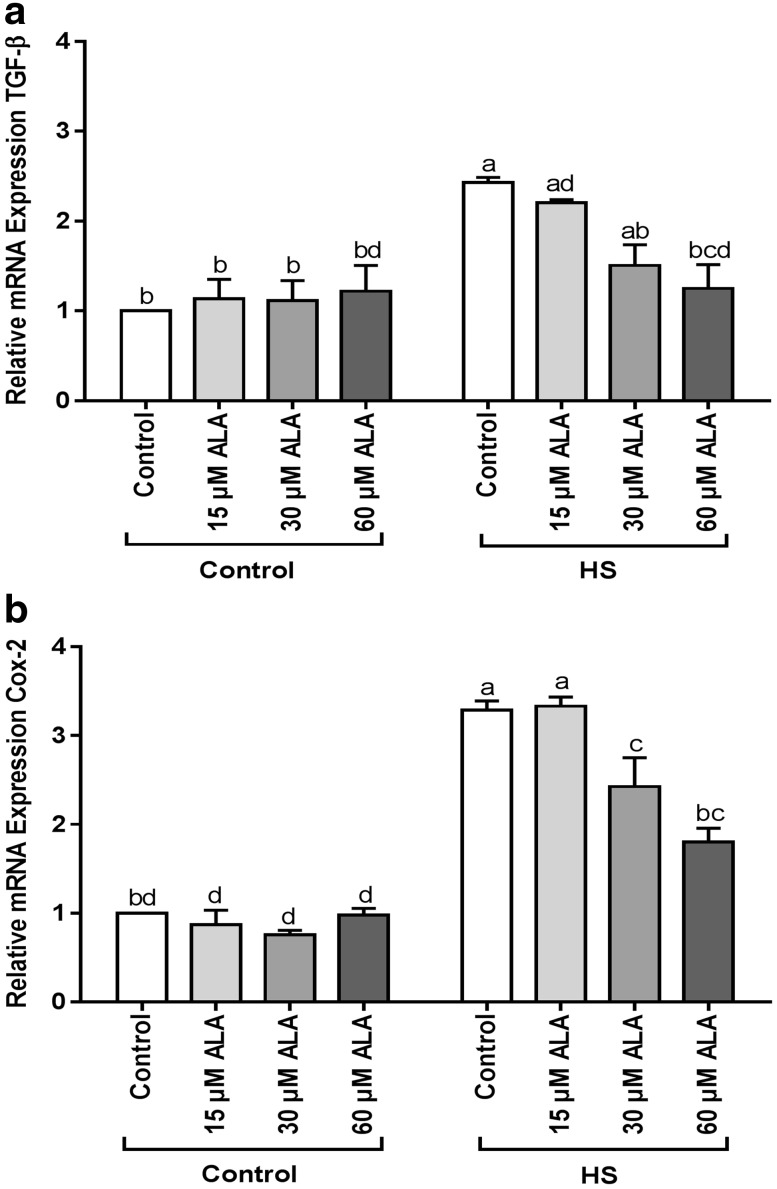 ALA prevents the HS-induced upregulation of TGF-β and COX-2 mRNA expression. Caco-2 cells grown on inserts and pretreated with ALA (24 h) were exposed to HS (42 °C, 6h) to evaluate the mRNA expression of TGF-β and COX-2 (qRT-PCR). Results are expressed as mRNA expression (normalized with β-actin) relative to unstimulated cells as mean ± SEM of three independent experiments. Different lower case letters denote significant differences among groups