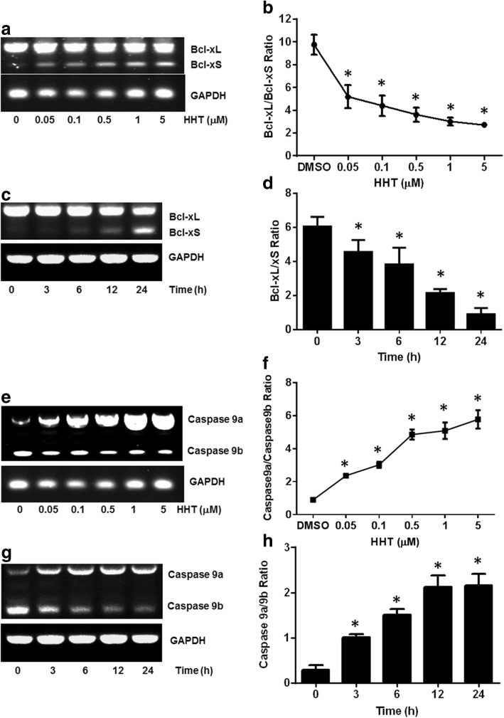 HHT regulates Bcl-x and Caspase 9 splicing in MCF7 cells. MCF7 cells were treated with HHT. Total RNA was extracted and analyzed by semi-quantitative RT-PCR for the alternative splicing of Bcl-x and Caspase 9. a Decrease of Bcl-xL and increase of Bcl-xS is correlated with HHT concentration. b Densitometric analysis of the ratio of Bcl-xL/xS (* P