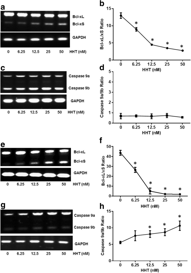 HHT regulates Bcl-x and Caspase 9 splicing in A549 and UACC903 cells. Total RNA was extracted from A549 cells and UACC903 cells treated with HHT. The alternative splicing of Bcl-x and Caspase 9 was then analyzed by semi-quantitative RT-PCR. a Semi-quantitative RT-PCR analysis of Bcl-x splicing from A549 cells treated with different concentrations of HHT. b Densitometric analysis of the ratio of Bcl-xL/xS in A549 cells treated by HHT (* P