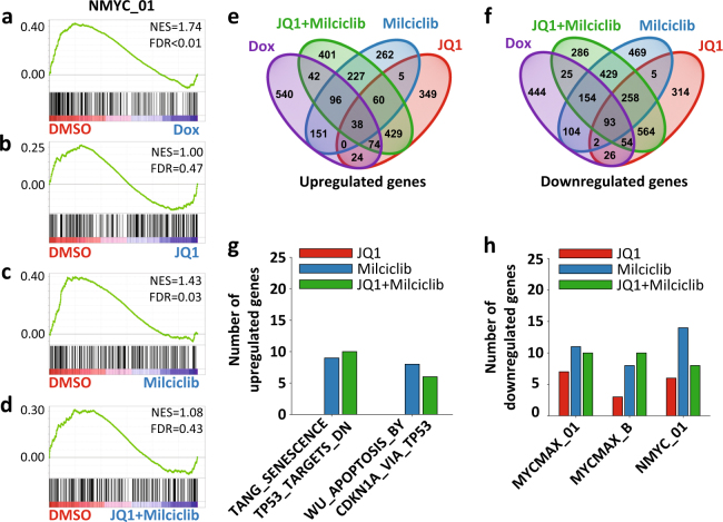 Comparing the transcriptional output from MYCN suppression with BET and CDK inhibition in order to identify essential gene targets. Characterizing the transcriptional changes induced after 6 h treatments. a – d GSEA results for the top MYCN target gene-related gene set (NMYC_01) downregulated in GTML-DOX-6h as compared to GTML–DMSO-6h ( a ); the GSEAs for the same gene set are shown comparing GTML-DMSO-6h with GTML-JQ1-6h ( b ), GTML-Milciclib-6h ( c ), and GTML-JQ1+Milciclib-6h ( d ). Enrichments were considered significant if FDR