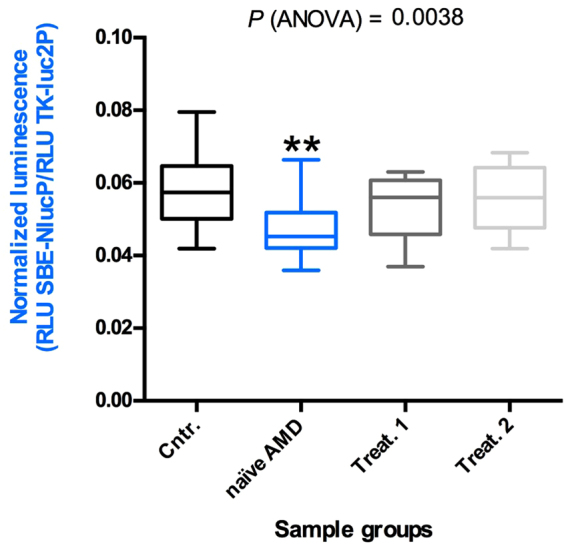 Quantitative analysis of TGF-β pathway activation by aqueous humor of patients and controls. Box and whisker plot showing that the aqueous humor of naïve nAMD patients induces less TGF-β pathway activation in <t>Lenti-X</t> <t>293T</t> cells. Cells were co-transfected with the plasmids pNL[NlucP/SBE], expressing NanoLuc luciferase under the control of three SMAD3 binding elements, and pGL4.54[luc2/TK], expressing the Firefly luciferase luc2 (used as transfection normalizer) under the control of the constitutive HSV-TK promoter. Transfected cells were treated with 10 μl of aqueous humor of the 20 nAMD patients, naïve or treated (once or twice, Treat.1 and Treat.2, respectively), or of the 20 control samples (Cntr.) described in Table 1 . Data are presented as the ratio between NanoLuc and luc2 luciferase activity, expressed as Relative Light Units (RLU) (number of replicates for each sample = 3). Asterisks indicate significant differences (**P