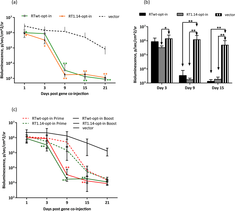 """Effector immune response evaluated in vivo by """"antigen challenge"""" in a prime-boost Luc/RT immunization of mice. BALB/c mice (n = 6) were immunized with two intradermal injections (29G needle) containing 40 µg RTwt-opt-in or RT1.14-opt-in encoding plasmids per mouse with subsequent electroporation by <t>Dermavax</t> (standard protocol) and 4 weeks later boosted with 20 µg of the same RT genes per mouse mixed 1:1 (w/w) with a Luc-encoding plasmid. Control mice received empty vector as a prime and a vector/Luc gene mixture as a boost. The emitted bioluminescence was monitored on days 1, 3, 9, 15, and 21 after boosting ( a , b ). Comparison of photon flux exhibited by mice primed with Luc/RT (Supplementary Fig. S4 ) or primed with RT and boosted with Luc/RT gene variants ( c ). Each curve ( a , c ) or bar ( b ) represents the average photon flux (photons/s/cm 2 /sr) from the injection area observed for the group of six mice (12 immunization sites), and the error bars represent the SD. The difference in photon flux between RT- and vector-immunized mice ( a , b ) and between prime and prime-boost groups of RT-immunized mice ( c ) is indicated by *p"""