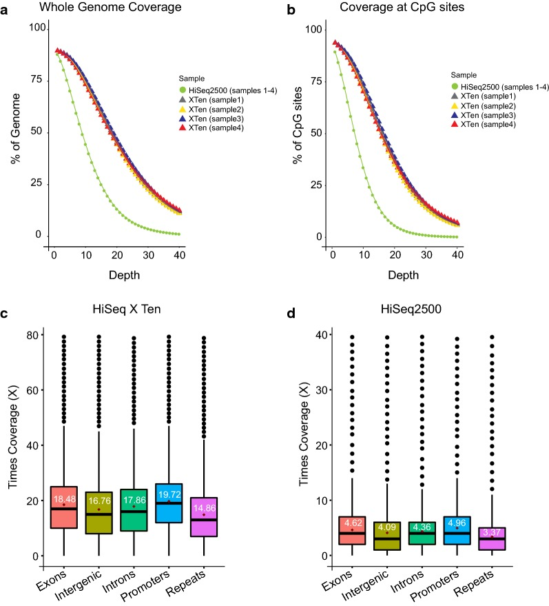 Coverage comparison between HiSeq 2500 and <t>HiSeq</t> X Ten. a Plot shows the fraction of genome covered at different depths for four samples sequenced together on one lane of the HiSeq 2500 versus when each of the samples is sequenced on a single lane of the HiSeq X Ten. The coverage plot for the HiSeq 2500 HO mode is the merged coverage obtained from multiplexing the four samples. b Plot shows the fraction of CpG sites covered at different depths when four clinical samples are sequenced together on one lane of the HiSeq 2500 versus when each of the samples is sequenced on a single lane of the HiSeq X Ten. c , d Box plot showing the coverage distribution across exons, intergenic regions, introns, promoter regions and repeat regions of the genome for a sample sequenced on one lane of HiSeq X Ten ( c ) and HiSeq 2500 ( d )