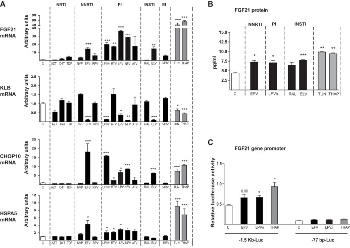 Effects of antiretroviral drugs on the expression of FGF21 , KLB, CHOP10 , and HSPA5 mRNAs and on FGF21 promoter activity in human hepatic HepG2 cells. Cells were exposed, when indicated, to the following drugs: zidovudine (AZT), 100 μM; stavudine (D4T), 100 μM; tenofovir disoproxil fumarate (TDF), 5 μM; nevirapine (NVP), 20 μM; efavirenz (EFV), 50 μM; rilpivirine (RPV), 10 μM; lopinavir-ritonavir 4:1 (LPV/r), 20 μM; ritonavir (RTV), 20 μM; lopinavir (LPV), 20 μM; nelfinavir (NFV), 20 μM; atazanavir (ATV), 50 μM; raltegravir (RAL), 50 μM; elvitegravir (ELV), 50 μM; maraviroc (MRV), 4 μM; tunicamycin (TUN), 2 μM; thapsigargin (THAP), 2 μM. (A) mRNA levels are presented as means ± SEM from 4 to 5 independent experiments and are expressed relative to values for control cells (defined as 1). (B) FGF21 protein levels in cell culture medium. (C) Luciferase activity in HepG2 cells transiently transfected with plasmid constructs in which luciferase is driven by the −1,497/+5 (−1.5 kb-Luc) or −77/+5 (−77 bp-Luc) 5′ regions of the FGF21 gene. Cells were treated for 24 h with the indicated concentrations of drugs: EFV, 50 μM; LPV/r, 20 μM; THAP, 2 μM. Data are normalized to Renilla luciferase activity driven by the cotransfected pRL-CMV plasmid. Data are means ± SEM from 4 to 5 independent experiments. *, P