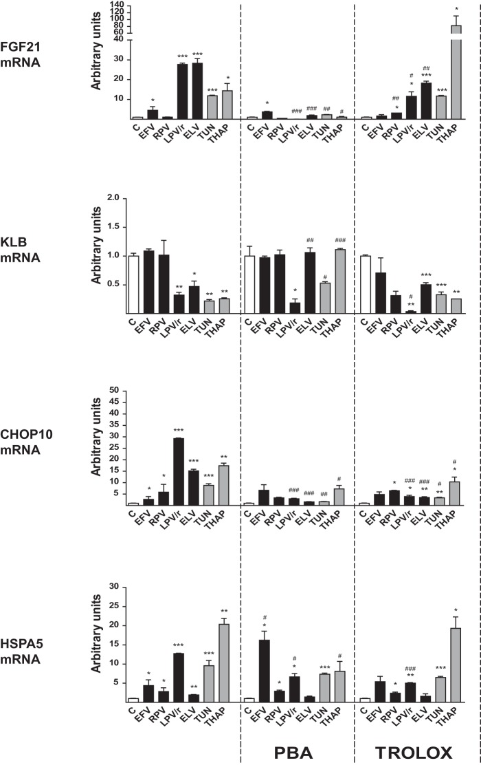 Effects of the ER stress-response inhibitor PBA and the antioxidant Trolox on the actions of antiretroviral drugs on the expression of FGF21 , KLB , CHOP10 , and HSPA5 mRNAs in human SGBS adipocytes differentiated in culture. SGBS human preadipocytes were differentiated in culture into adipocytes and treated for 24 h with the following drugs: efavirenz (EFV), 20 μM; rilpivirine (RPV), 10 μM; lopinavir-ritonavir 4:1 (LPV/r), 20 μM; elvitegravir (ELV) 10 μM; tunicamycin (TUN), 2 μM; thapsigargin (THAP), 2 μM. Where indicated, cells were cultured in the presence of 2 mM PBA or 1 mM Trolox. Data are presented as means ± SEM from 4 to 5 independent experiments and are expressed relative to values for control cells (defined as 1). *, P
