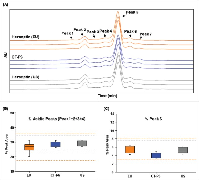 Comparison of charge variants of CT-P6 (blue), EU-Herceptin® (orange) and US-Herceptin® (grey) analyzed by IEC-HPLC. (A) Representative ion exchange chromatograms are presented for 3 batches of each product. The number and distribution of IEC-HPLC peaks are conserved between CT-P6 and RMPs. (B) Box plots of acidic peaks % (Peak 1 + Peak 2 + Peak 3 + Peak 4) in IEC-HPLC, (C) Box plot of Peak 6 % in IEC-HPLC. Orange and grey broken lines represent quality range of EU-Herceptin® and US-Herceptin®, respectively. Box plot shows the interquartile range (box), median (band inside of box), maximum and minimum values (whiskers).