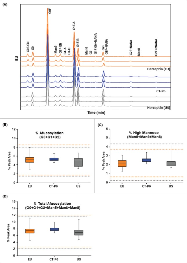 Comparison of oligosaccharide profiles of CT-P6 (blue), EU-Herceptin® (orange) and US-Herceptin® (grey) analyzed by HILIC-UPLC with 2-AB labeling. (A) Representative oligosaccharide profiles are presented for 3 batches of each product. The types and proportions of the glycans are conserved among the products. (B) Box plot of afucosylated glycans % (G0+G1+G2), (C) Box plot of high mannose glycans % (Man5+Man6+Man8), (D) Box plot of total afucosylated glycans % (G0+G1+G2+Man5+Man6+Man8). Orange and grey broken lines represent quality range of EU-Herceptin® and US-Herceptin®, respectively. Box plot shows the interquartile range (box), median (band inside of box), maximum and minimum values (whiskers).