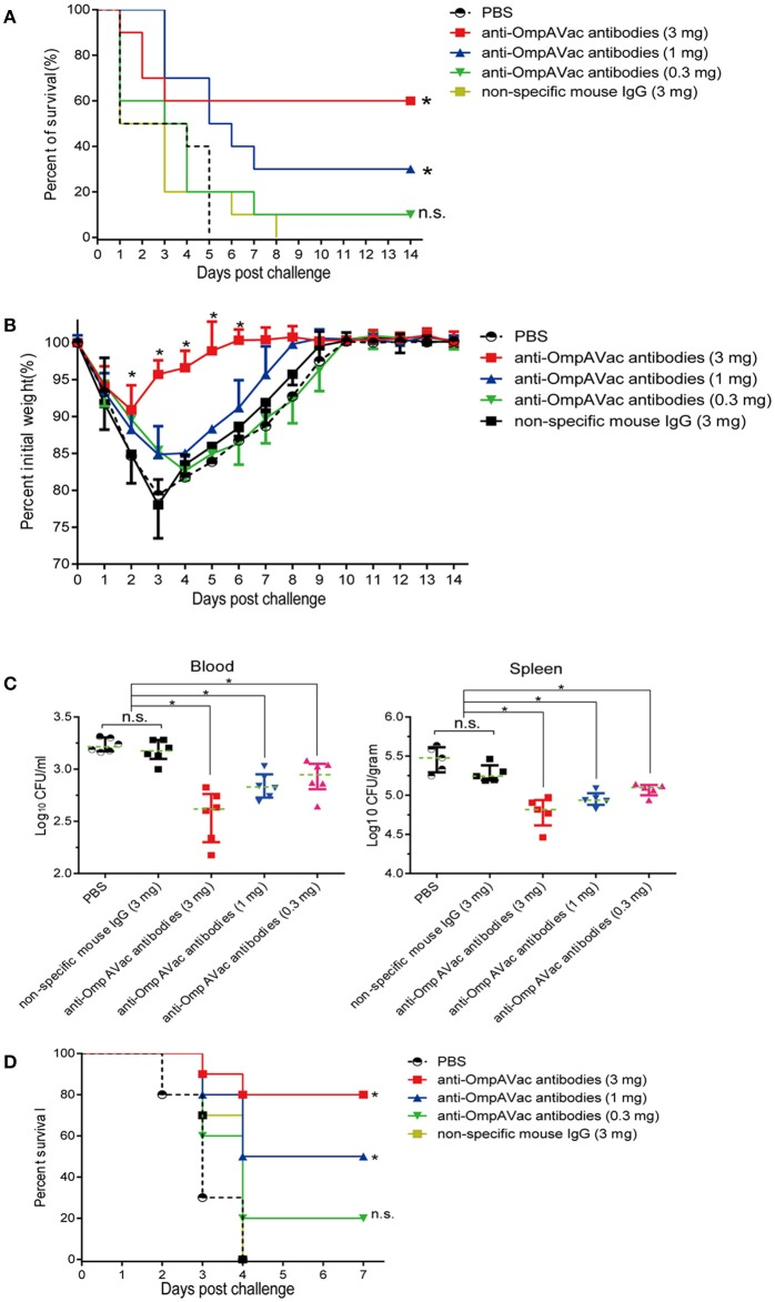 Anti-OmpAVac antibodies contribute to OmpAVac-mediated protection. (A) Survival rates of mice challenged with a lethal dose of E. coli K1 RS218. Ten mice each in each groups were administered 3, 1, and 0.3 mg of anti-OmpAVac antibodies, respectively. Twenty-four hours later, the mice were challenged with a lethal dose of E. coli K1 RS218. The number of survivors was recorded daily for 14 days. Three mg of IgG purified from unimmunized mice was used as a negative control. The Kaplan-Meier test was employed for analysis of the survival rate. * indicates significant difference between vs PBS control group and non-specific mouse Ig group ( P