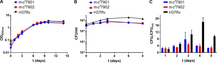 mc 2 7901 and mc 2 7902 grow similarly to virulent M. tuberculosis in vitro . (A) Log-phase cultures of mc 2 7901 and mc 2 7902 grown in Middlebrook 7H9-OADC-glycerol-tyloxapol-PLAM were diluted 1/100, and growth was followed by recording optical density at 600 nm (OD 600 ) over time. Mean with standard deviation is plotted ( n = 2). (B) RAW 264.7 macrophages were infected at an MOI of 1 with mc 2 7901, mc 2 7902, or H37Rv. At the indicated time points, macrophages were lysed, and bacterial titers were determined by plating for CFU on Middlebrook 7H10-OADC-glycerol-PLAM plates. PLAM was added to the macrophage growth medium, and the medium was changed at each time point. (C) Growth of mc 2 7901 and mc 2 7902 in RAW 264.7 macrophages relative to the inocula (same experiment as in panel B). Mean with standard deviation is plotted ( n = 2).