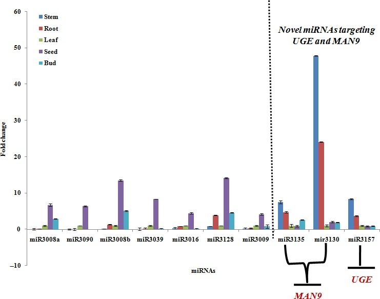 Relative expression analysis of 10 mi RNA s, including nine novel mi RNA s, Ct ‐miR3008a, Ct ‐miR3090, Ct ‐miR3008b, Ct ‐miR3039, Ct ‐miR3016, Ct ‐miR3128, Ct ‐miR3130, Ct ‐miR3135 and Ct ‐miR3157 and one known mi RNA , Ct ‐miR3009 (mi RNA 156), based on qRT ‐ PCR in five different clusterbean tissues.