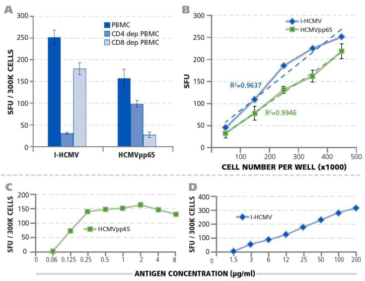 Qualification of HCMV-specific T-cell IFN-γ ImmunoSpot® testing of PBMC. ( A ) Establishing the CD4+/CD8+ lineage of HCMV-specific memory T cells. CD4+ or CD8+ T-cell depleted PBMC or unseparated PBMC of Donor 1 were tested in an IFN-γ ImmunoSpot® assay. The numbers of I-HCMV or HCMVpp65-induced IFN-γ SFU were measured for each condition, and the mean and SD for three replicate measurements of each are shown. ( B ) PBMC cell-number dependence of SFU. PBMC of Donor 1 were plated in the specified cell numbers per well and I-HCMV or HCMVpp65 (specified by color) was added at 50 μg/mL or 1 μg/mL, respectively. The numbers of IFN-γ SFU were established. Means and SD are shown for triplicate wells. The result of regression analysis for the experimental data approaching linearity is specified for both conditions as the R 2 value in color. ( C ) Establishing the optimal antigen dose for stimulation of HCMV-specific T cells by HCMVpp65 peptides. PBMC of Donor 1 were plated at 3 × 10 5 cells per well along with the different peptide concentrations specified. The number of IFN-γ SFU was measured in single wells. ( D ) Establishing the optimal antigen dose for stimulation of HCMV-specific T cells by I-HCMV. PBMC of Donor 1 were plated at 3 × 10 5 cells per well along with the different antigen concentrations specified. The number of IFN-γ SFU was measured in single wells.