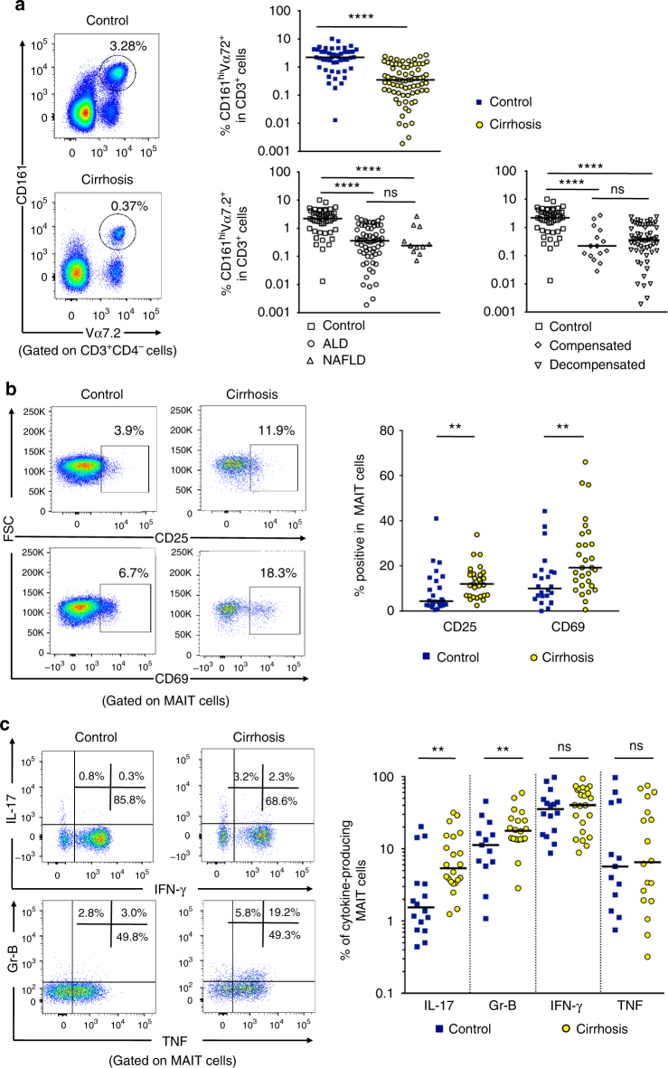 Frequency and functions of circulating MAIT cells are impaired during cirrhosis. a Representative dot plots showing reduction of CD161 hi Vα7.2 + double positive (MAIT) cells in PBMC and summary data from cirrhotic patients ( n = 74), as compared to that in healthy donors ( n = 47), and repartition of cirrhotic patients into disease etiology (alcoholic cirrhosis, n = 63 and NASH cirrhosis, n = 11) and severity (compensated cirrhosis, n = 15 and decompensated cirrhosis, n = 59). Representative dot plots and cumulative data of b increased surface expression of CD25 and CD69 on MAIT cells from healthy donors ( n = 25) and cirrhotic patients ( n = 29) and c cytokine profile of cirrhotic ( n = 20–23) vs. healthy ( n = 13–16) blood MAIT cells. Statistical analysis was performed using Mann–Whitney ( a , b , c ) or Kruskal–Wallis followed by Dunn's post test analysis ( a ). ** p ≤ 0.01; **** p ≤ 0.0001; ns p > 0.05