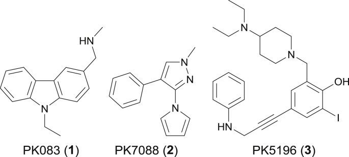 Structures of representative small molecules targeting the p53 cancer mutant Y220C.