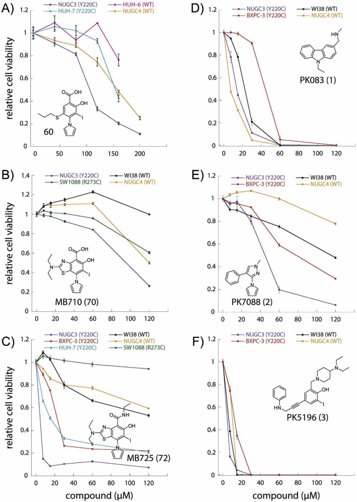 Effects of Y220C binders on cancer cell viability. Relative cell viability (Y-axis) of representative cell lines after 72 h treatment with increasing concentrations (X-axis, μM) of 60 (A), MB710 (B), MB725 (C), and previously reported lead compounds PK083 (D), PK7088 (E) and PK5196 (F). The cell line employed in each experiment and their respective p53 status are shown. Aminobenzothiazole MB725 shows strong and selective viability reduction in the p53-Y220C cancer cell lines BXPC-3, HUH-7, and NUGC3 at concentrations below 40 μM, while maintaining relatively low toxicity in the same concentration range in the p53-R273C mutant cell line SW1088, and the p53 WT cell lines WI38 (normal fibroblast cell line) and NUGC4. Cell viability was measured in quadruplicate and normalized against the values of blank (viability = 1) and no cell (viability = 0) controls. Data are shown as mean ± SEM.