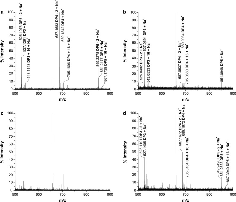 Identification of the mutated CtPMO1 soluble reaction products with PASC as substrate using MALDI-TOF–MS. Soluble reaction products upon incubation of 0.5% PASC with the mutated CtPMO1 enzymes Y27A ( a ), H64A ( b ), H157A ( c ) and Y206A ( d ) in 10 mM HAc-NH 4 Ac (pH 5.0) and 1 mM ascorbate at 50 °C for 48 h. C1-oxidized oligosaccharides (aldonic acid, m/z + 16) and C4- or C6-oxidized oligosaccharides (C4-ketoaldose or C6-hexodialdose, m/z − 2)