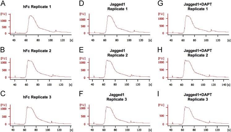Library quality and size check using the Bioanalyzer. (A-C) hFc replicates; (D-F) Jagged1 replicates; (G-I) Jagged1+DAPT replicates.