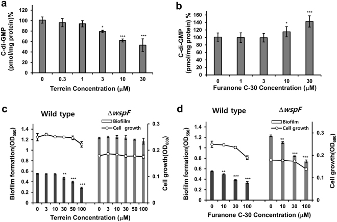 Effects of terrein on cellular c-di-GMP. ( a and b ) Cellular c-di-GMP levels in biofilm cells of PAO1 cultured with different terrein or furanone C-30 concentrations for 9 h. After the biofilms were dissociated from the wells by gentle sonication, cellular c-di-GMP was extracted from the biofilm cells, measured, and normalized to the total proteins. ( c and d ) Comparison of biofilm formation by the P . aeruginosa wspF mutant versus wild-type PA14 cells cultured with different terrein or furanone C-30 concentrations for 9 h. Three independent experiments were performed in triplicate, and the mean ± SD values are displayed in each bar. * P
