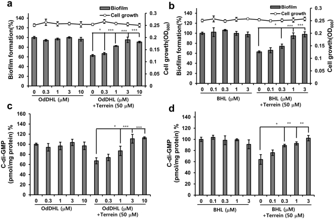 Effects of exogenous QS ligands on the inhibition of biofilm and cellular c-di-GMP by terrein. ( a and b ) Biofilm formation and ( c and d ) c-di-GMP concentrations of PA14 cells cultured with terrein (50 μM) in the presence or absence of a different concentration of OdDHL or BHL for 9 h. Three independent experiments were performed in triplicate, and the mean ± SD values are displayed in each bar. * P