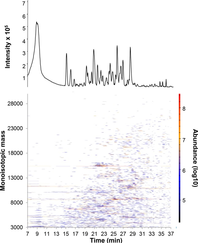 Capillary HILIC-MS of an E. coli lysate (5 μL loaded of a 2.5 mg/mL solution in 2% <t>ACN</t> and 0.1% TFA). (top) Base-peak chromatogram (900–3000 m / z ); (bottom) feature map showing deconvoluted MS spectra. The deconvolution algorithm is based on isotopically resolved molecular features, and therefore, potential features above 35 kDa are not identified. Mobile phases as specified in the Experimental Section . Loading at 10% B, multisegment linear gradient from 10–12% B in 1 min, 12–30% in 30 min, 30–65% B in 6 min, 65–90% B in 1 min, followed by 3 min at 90% B and several washing steps (total analysis time of 60 min).
