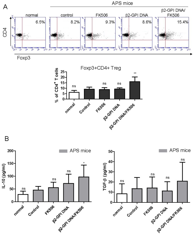Effects of the β2-GPI DNA vaccine and FK506 treatment on β2-GPI-specific Treg cell response. Spleen cells were purified from the different mouse groups on day 56 and stimulated with recombinant β2-GPI protein (10 μg/mL). After 96 h, (A) the percentage of Foxp3-expressing CD4+ T cells was determined by flow cytometry. The dot plot shows data from one representative mouse from each group. The bar graph represents the mean ± standard deviation (SD) of six mice from three independent experiments. (B) The culture supernatants were collected, and IL-10 and TGF-β production was analyzed in triplicate by ELISA. The data are presented as the means ± SD of triplicate assays from six mice/group. ns p > 0.05, **p