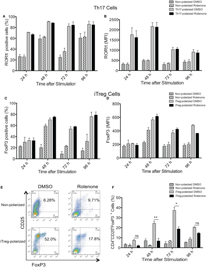Rotenone treatment does not affect the expression of T helper (Th) cell master transcriptional regulators. CD4 T cells were left untreated or treated with 20 µM rotenone for 2 h and then stimulated with plate-bound anti-CD3ε plus anti-CD28 for 24, 48, 72, and 96 h in the presence of specific Th17- or induced regulatory T cell (iTreg)-specific polarization conditions. At the indicated timepoints, cells were harvested, and we determined the (A) percent RORγt-positive and (B) median fluorescence intensity (MFI) of RORγt expressed in Th17-polarized cells, and the (C) percent Foxp3-positive and (D) MFI of Foxp3 expressed in iTreg-polarized cells. (E) Representative dot plot and (F) collated data showing percentages of CD4 + CD25 + Foxp3 + iTregs following differentiation in the absence or presence of rotenone. Data represent the mean ± SEM of three independent experiments. * p