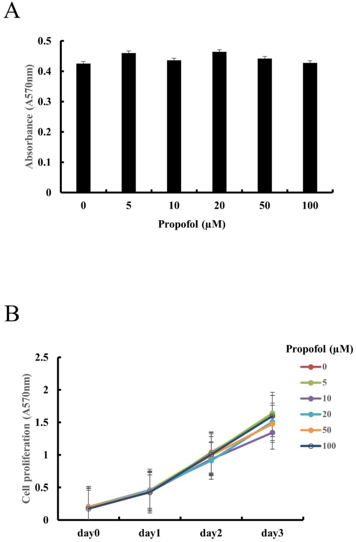 Propofol does not exert cytotoxic effects or alter cell proliferation in primary calvarial osteoblasts. (A) Calvarial osteoblasts were incubated in medium containing indicated concentrations of propofol (0-100 μM) for 24 hours. Cell viability was evaluated by MTT assay. (B) Calvarial osteoblasts were cultured in osteogenic media (OM, 10 mM β-glycerophosphate + 100 μM L-ascorbic acid) for 3 days in the presence of indicated doses of propofol (0-100 μM). Cell proliferation was measured at daily intervals by MTT assay.