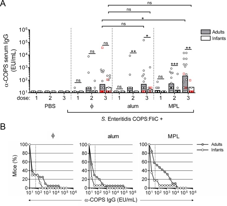 Anti-COPS IgG responses in adult and infant mice after immunization with S . Enteritidis COPS:FliC alone or formulated with different adjuvants. (A) Infant and adult mice ( n = 16–20/group) were immunized as described in Fig 1 . Serum anti-COPS IgG titers taken 12–14 days after each dose were determined by ELISA. Each point represents an individual mouse. Red squares indicate mice that succumbed to subsequent challenge. Bars represent the GMT for adults (grey) and infants (white), and were compared using a two-tailed Mann-Whitney U test. Adjustments for multiple comparisons were not made. ns, not significant. * P ≤ 0.05; ** P ≤ 0.005; *** P ≤ 0.0005 for indicated comparisons. (B) Reverse cumulative distribution curves for post 3 rd immunization anti-COPS IgG titers for adults (grey circles) and infants (white circles) are depicted. Dotted lines indicate the cut-off for seroconversion (50 EU/mL), which represents a 4-fold rise over the anti-COPS IgG GMT for PBS controls.
