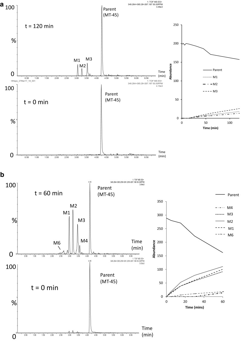Chromatographic profiles and time-course data following incubation of MT-45 with a human hepatocytes after 120 min, and b human microsomes after 60 min obtained by ultra-performance liquid chromatography–quadrupole time-of-flight mass spectrometry. Metabolite labelling information can be found in Fig. 5 and Table 2