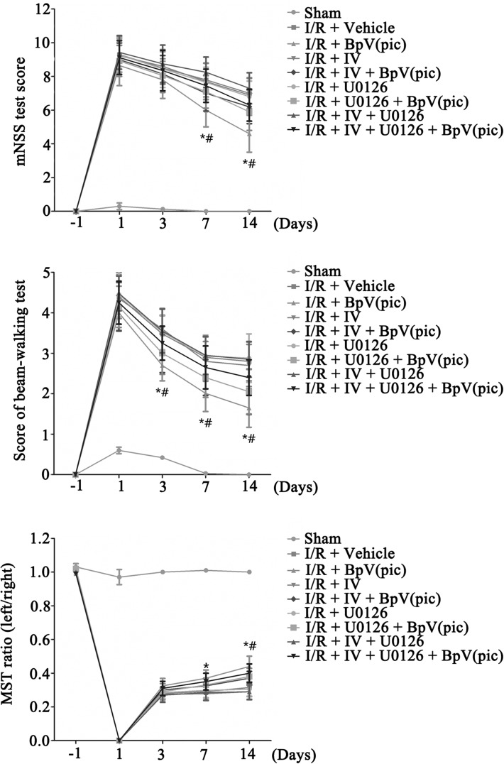 BpV(pic) induces the functional recovery in ischemic stroke animals through PTEN inhibition and ERK 1/2 activation.  a  Animals treated with bpV(pic) have lower scores in mNSS test at day 7 and 14 after ischemia–reperfusion injury compared with I/R + Vehicle group. Animals injected with IV and/or U0126 before injected with bpV(pic) show a higher scores in mNSS test at day 7 and 14 after ischemia–reperfusion than I/R + bpV(pic) group [n = 6 for each group, *P