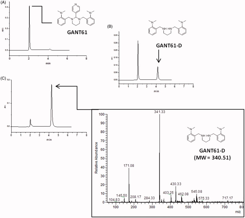 HPLC-UV chromatograms acquired during the time showing the disappearance of GANT61 and the formation of GANT61-D. Sample: GANT61 in CH 3 CN/100 mM NH 4 OAc (pH 4.5) = 95/5 (v/v) (1 mg/ml), column: Acclaim <t>HILIC-10,</t> 3 μm (150 × 4.6 mm I.D.), mobile phase: CH 3 CN/100 mM NH 4 OAc (pH 4.5) = 95/5 (v/v), flow-rate: 1.0 ml/min, detection: UV at 254 nm. (A) t = 0 min; (B) t = 30 min; (C) t = 24 h. The ESI-MS (pos.) spectrum of GANT61-D is included in the box for unequivocal identification.